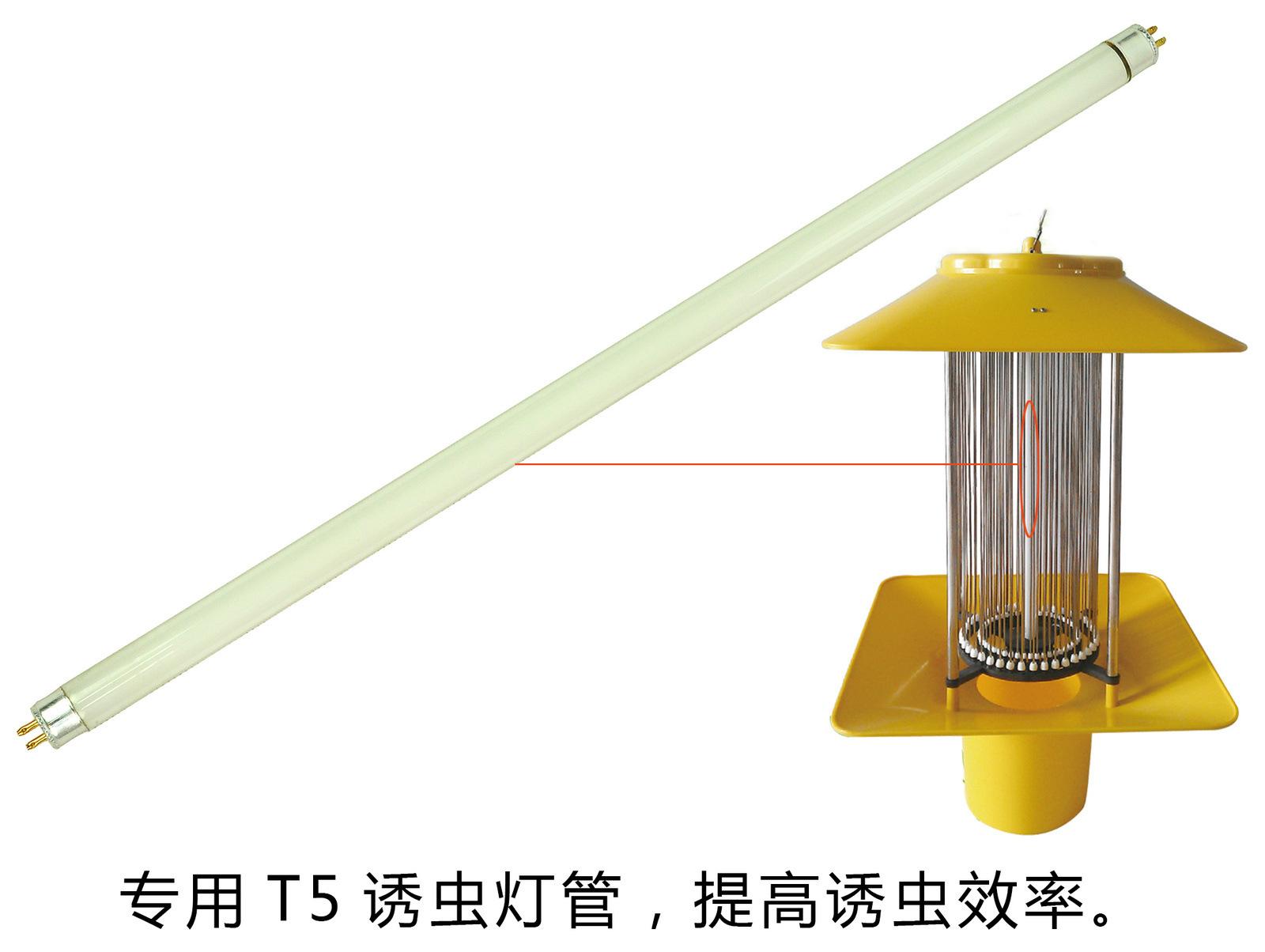 T5灯管-黄