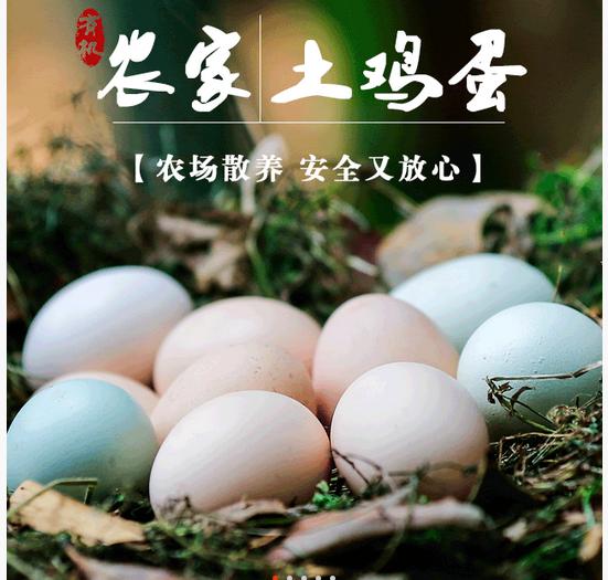 农 家 土 鸡 蛋